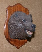 0701 - (H) Grizzly Bear Sporting Trophy